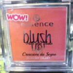 [Recensione] Blush Up! Essence