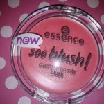 [Recensione] Essence Soo Blush – 20 Everything Is Better In Pink – Novità Autunno 2014