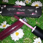 [Recensione] Wjcon Limited Edition Makeup Artist – Liquid Lipstick 13 Vinaccia