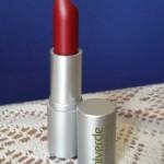 review lipstick 62 Alverde