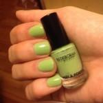 [Recensione] Deborah – Smalto 'Pret a Porter' – 50 Pistache Green